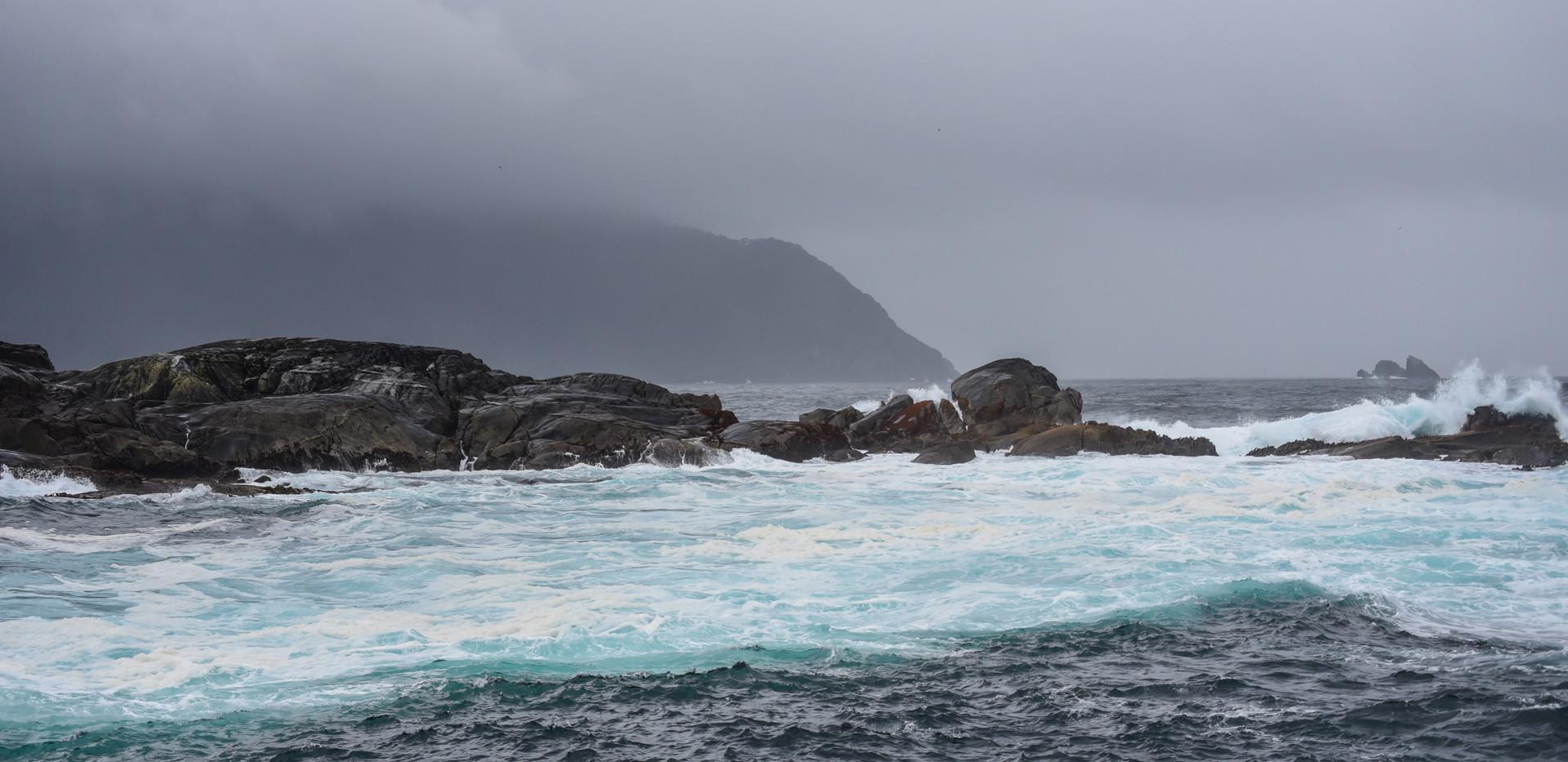 Where the Tasman Sea Meets the Sound