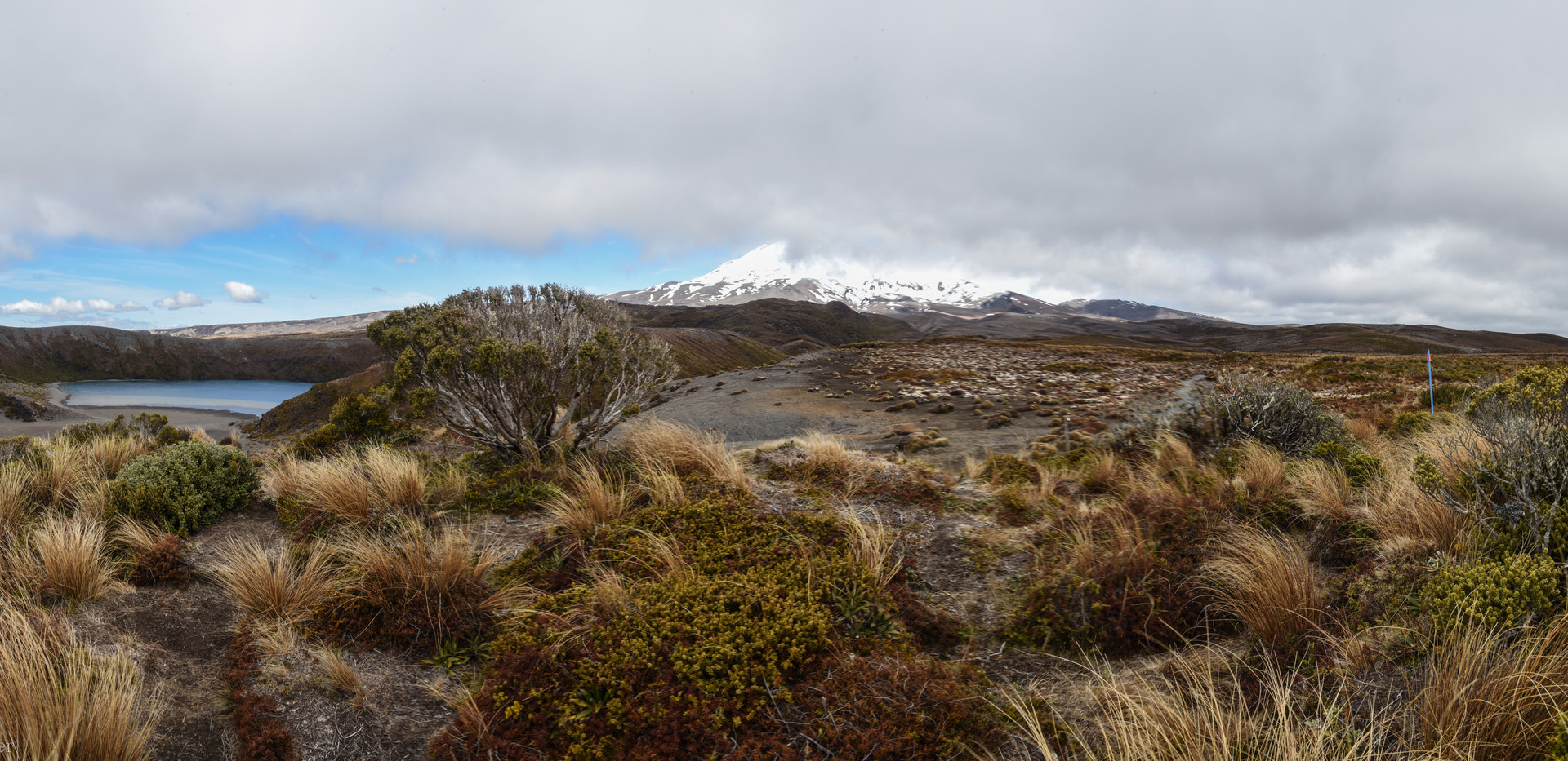 A Glimpse of Ruapehu