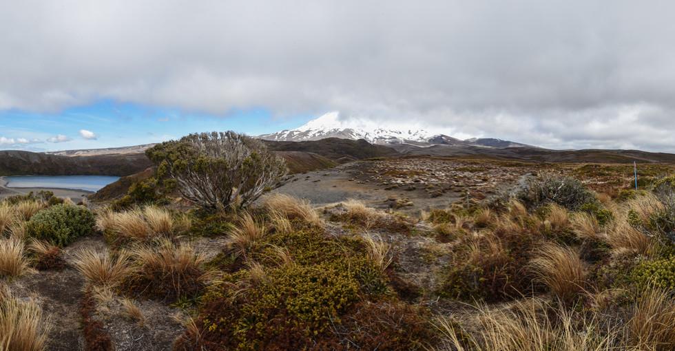 A Glimpse of Ruapehu