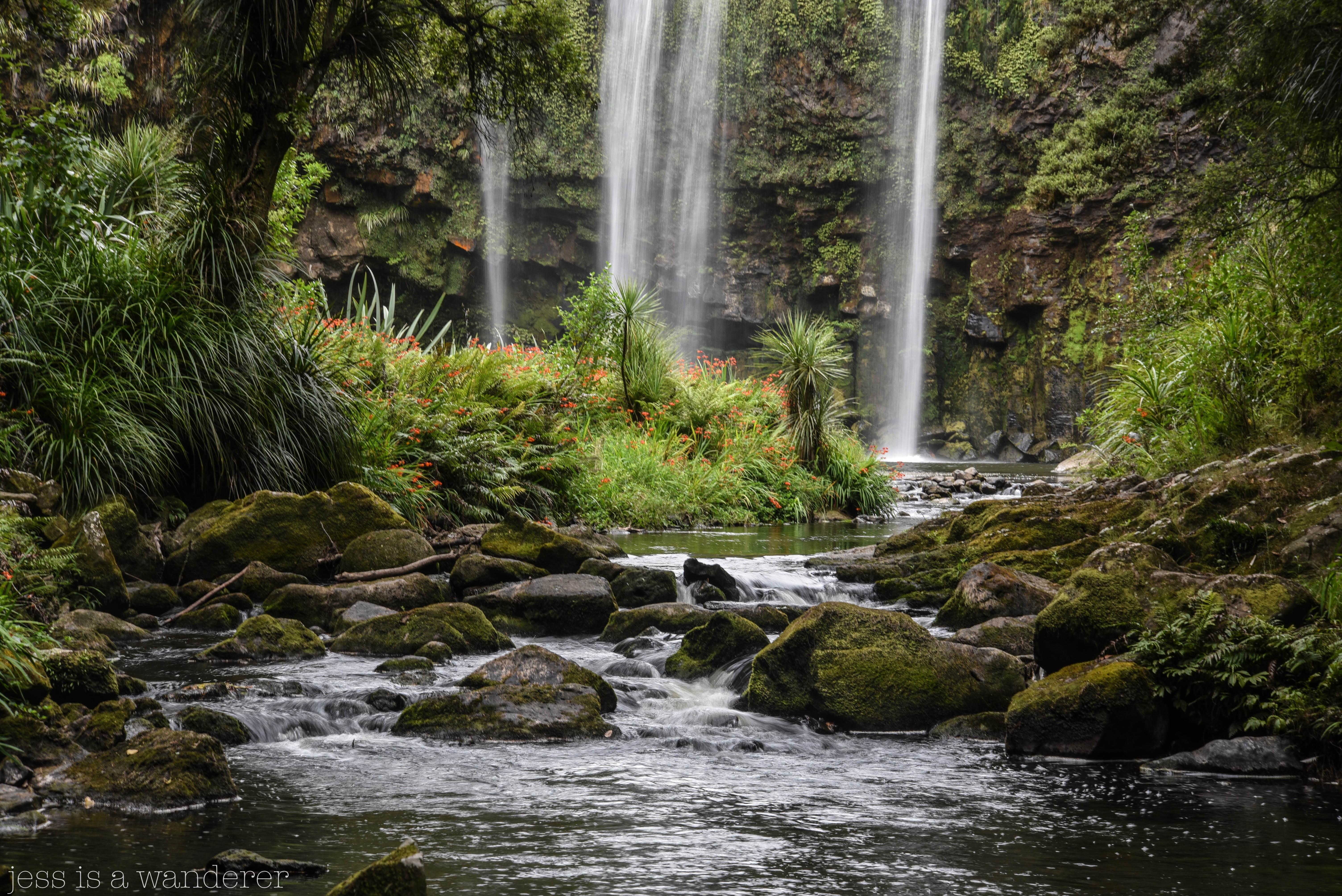 Whangarei Falls 3