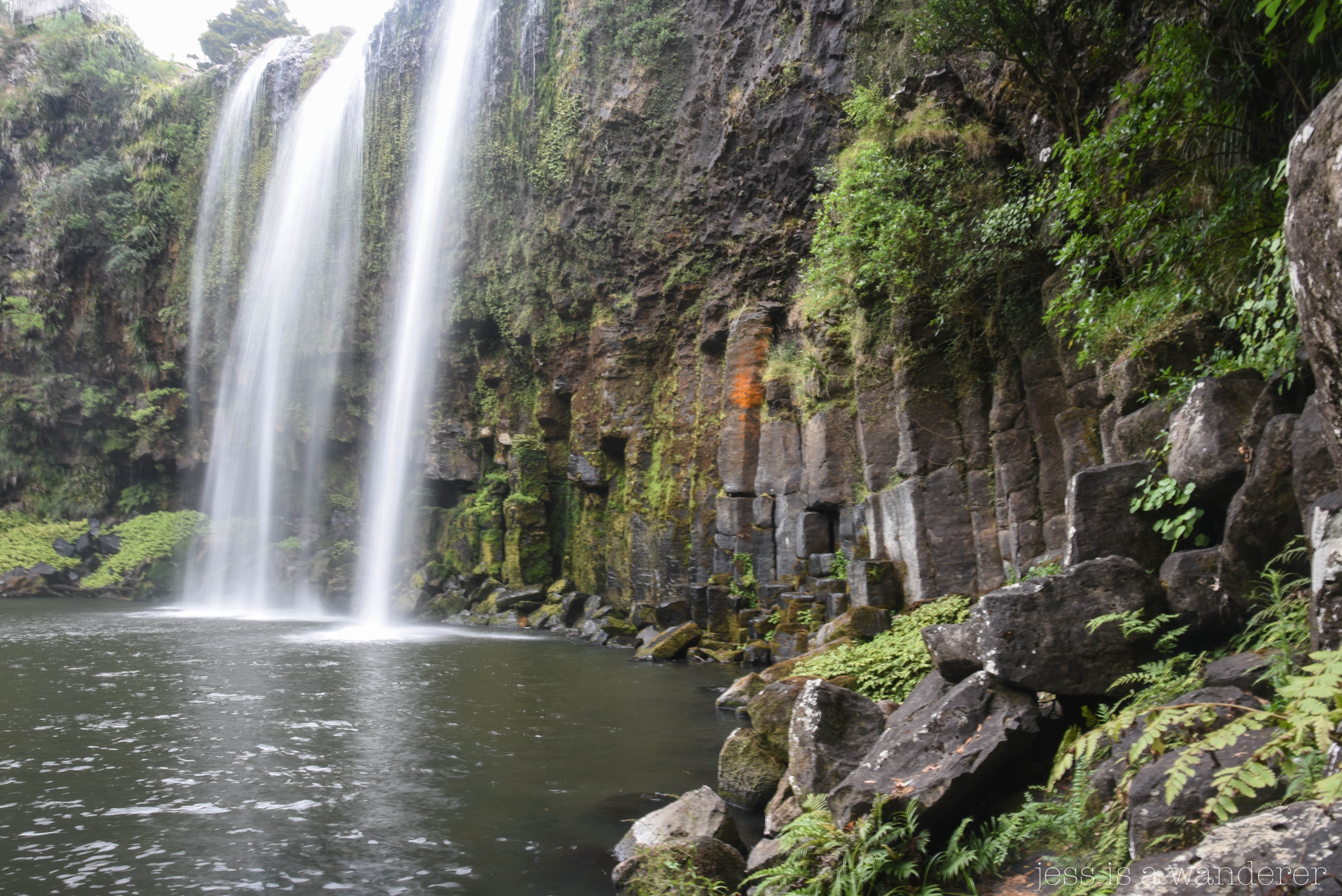 Whangarei Rock Pools