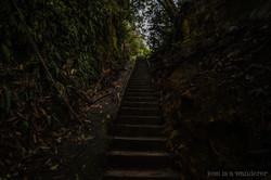 Steps Ascending