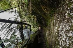 Steps to Tutea's Cave