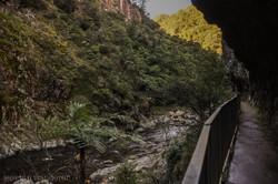 Along the Rockface