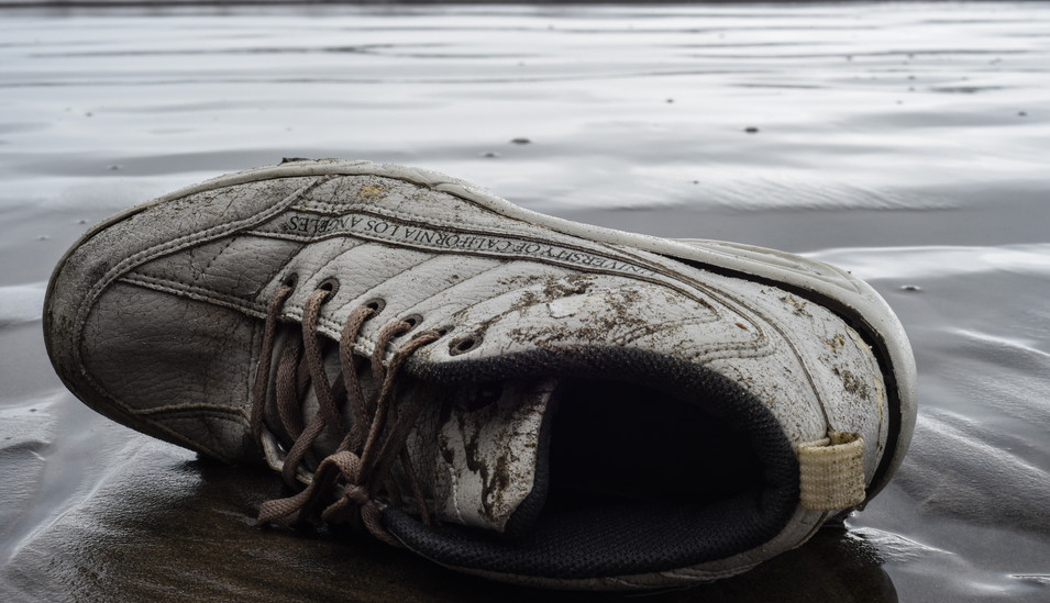 UCLA Shoe