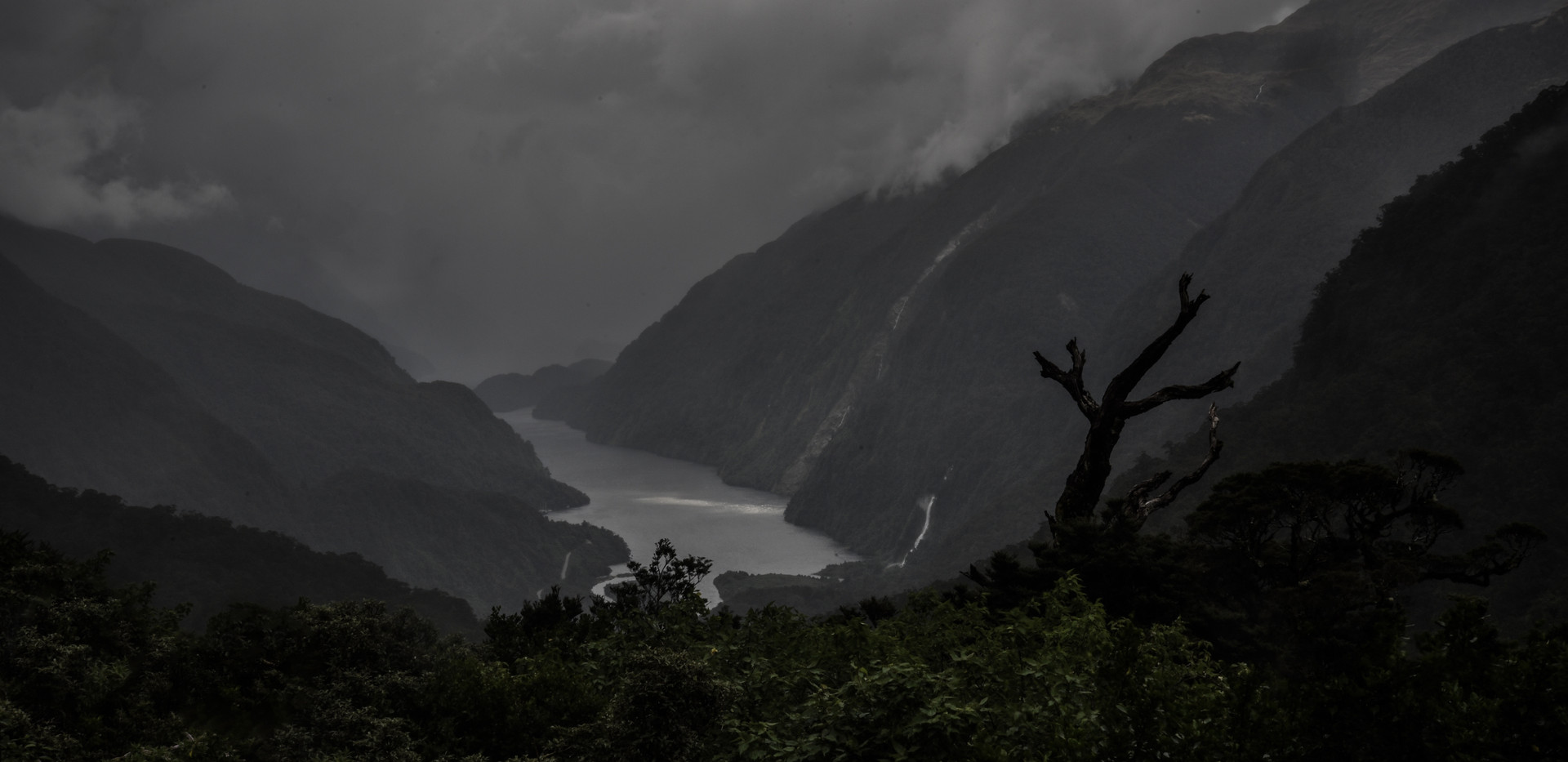 A Gloomy Outlook