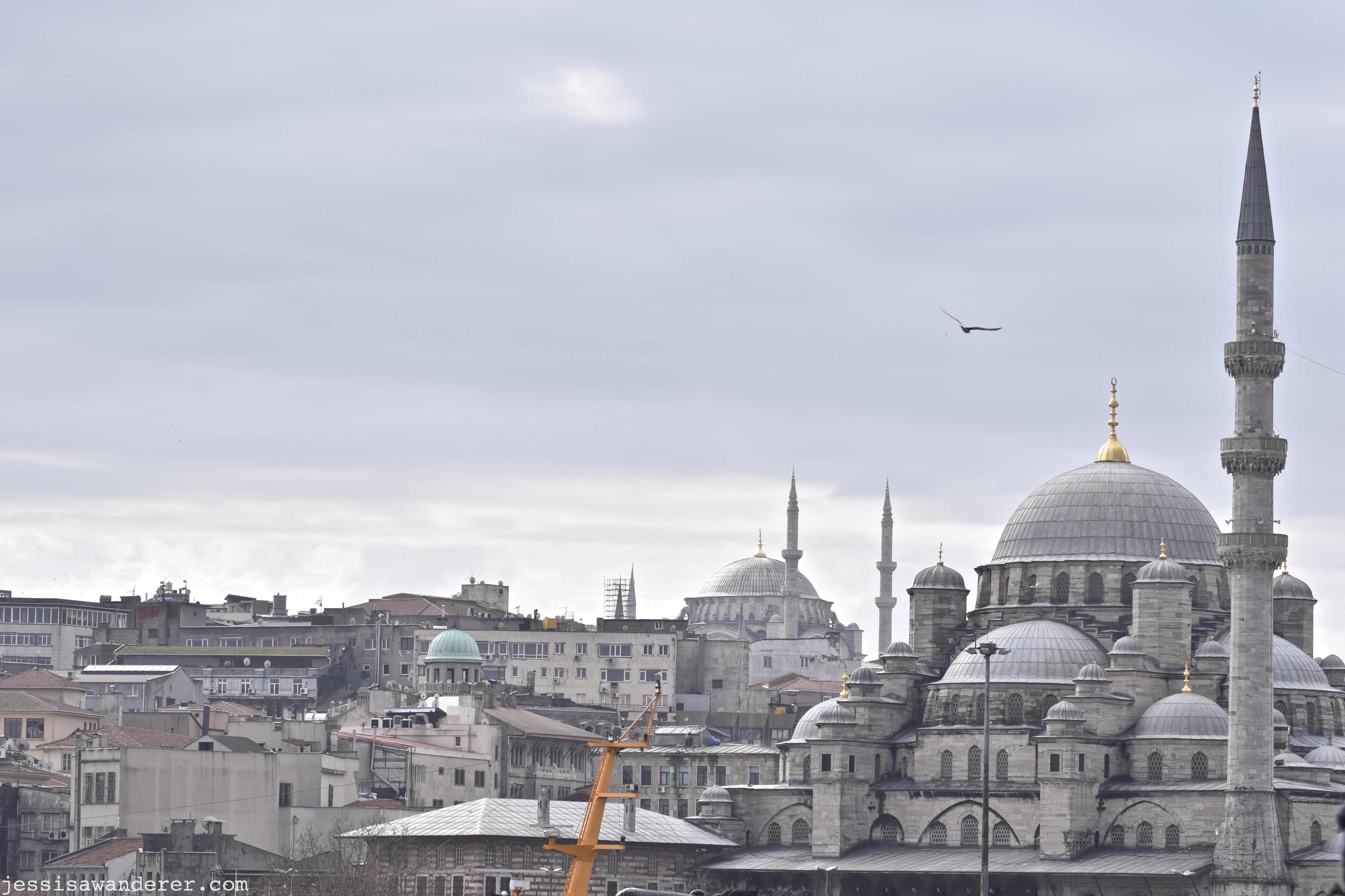 Distant Minarets