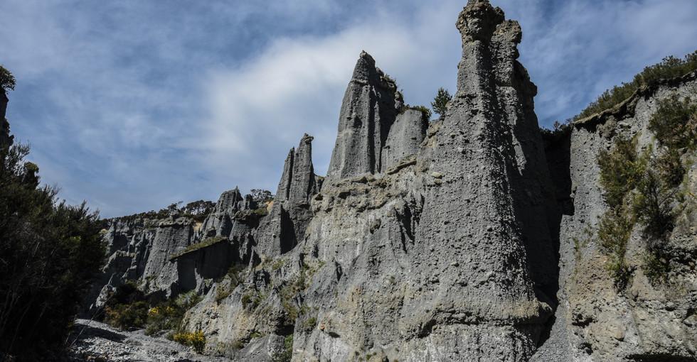 Towering Giants