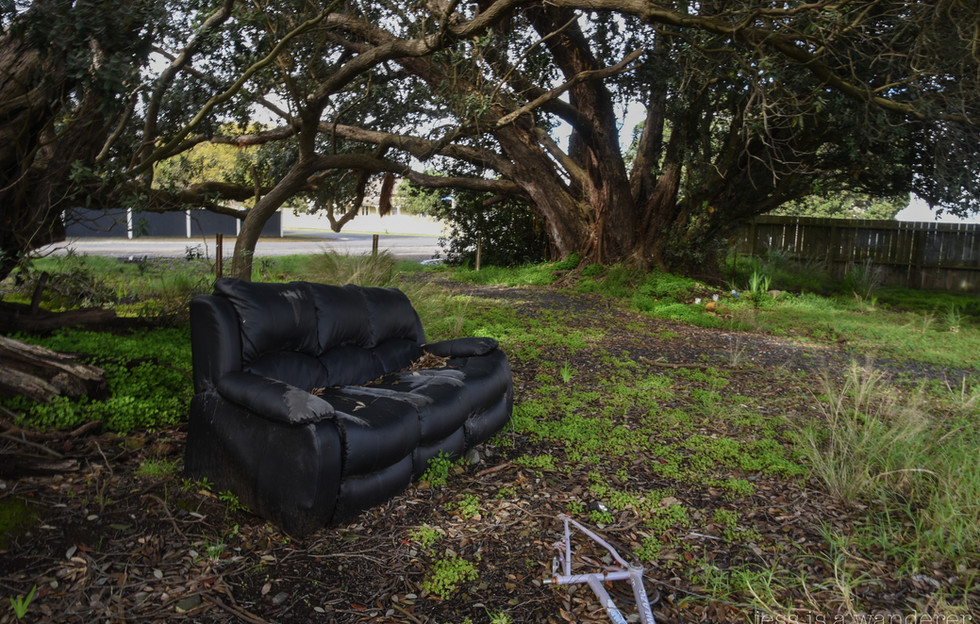 Sofa in the Trees
