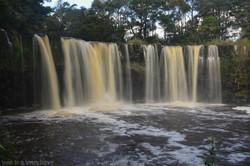 Mangere Falls Close