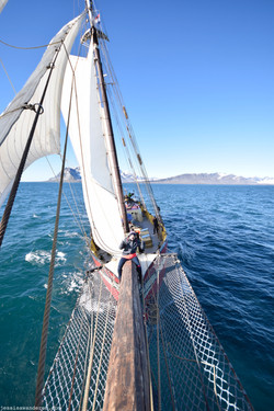 Sailing Freely