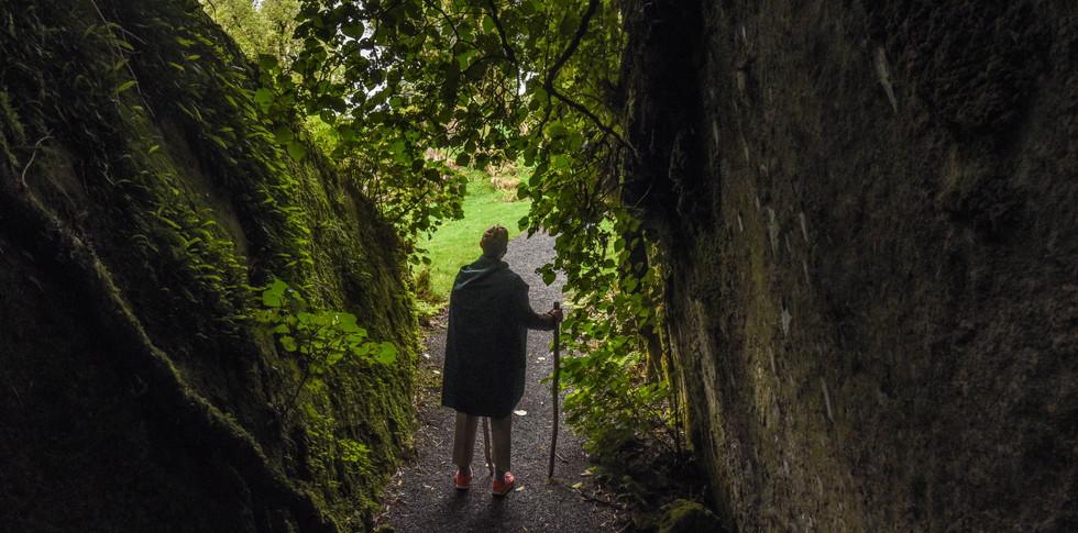 Hobbit on a Journey