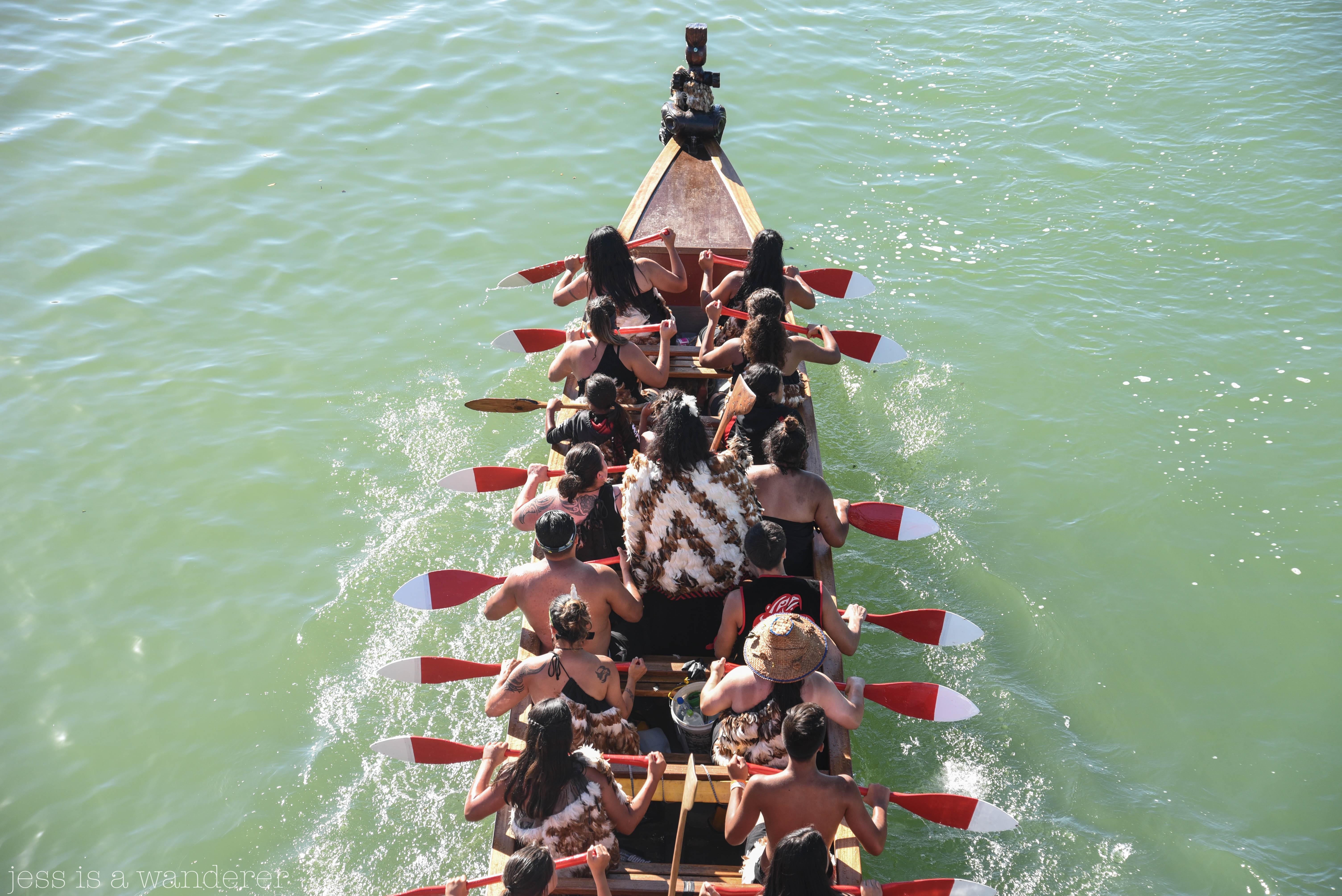 Waitangi 4