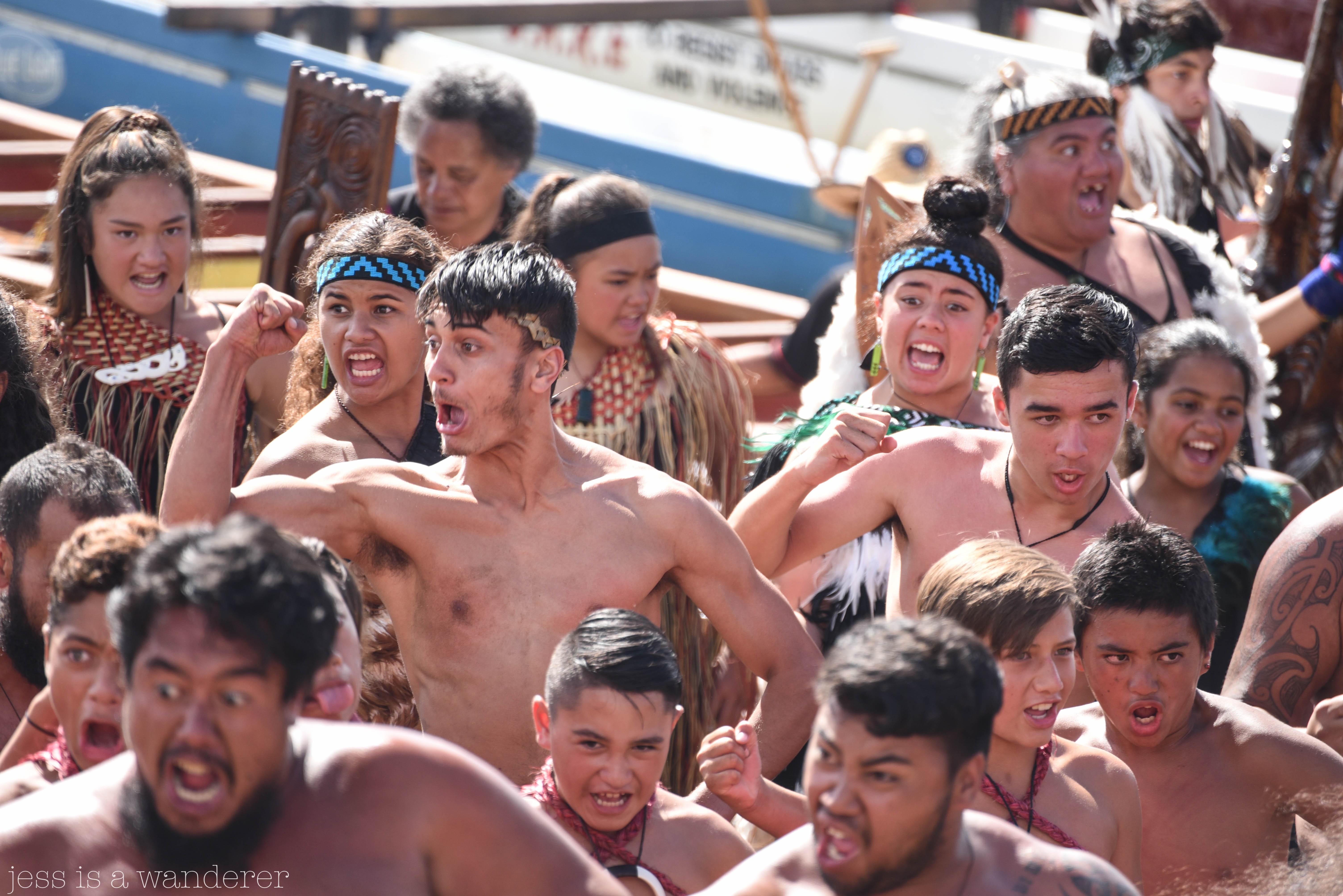 Waitangi 8