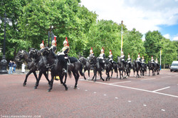 Royal Guards on the Move