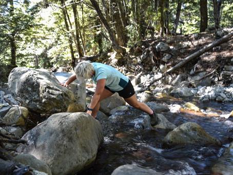 Jess is a Wanderer at Lake Middleton