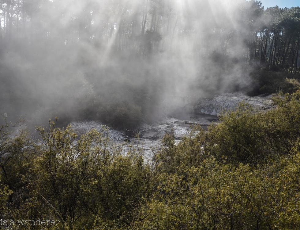 Sun and Steam