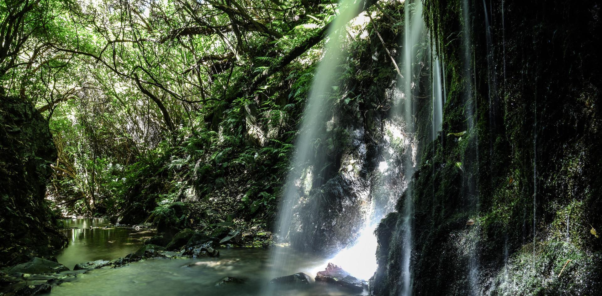 Kelceys Bush Waterfall