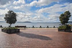 Lake Rotorua in the Daylight