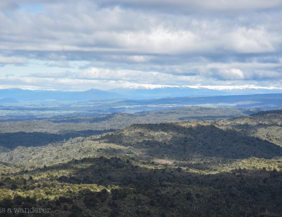 Distant Mount Ruapehu