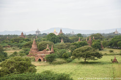 Sprawling Temples