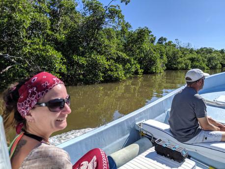 Everglades Discovery Eco Tours
