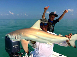 Shark Fishing in the Everglades