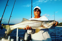 Snook Fishing in the Everglades