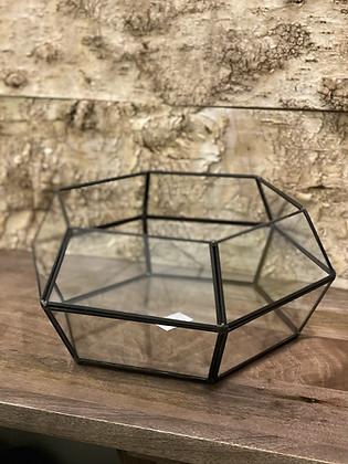 """tropical terrarium glass 9"""""""