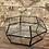 """Thumbnail: tropical terrarium glass 9"""""""