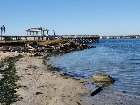 A Visit to a Post Ice-Age Inland 'Beach' in Long Island