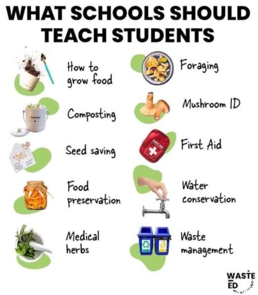 O que escolas deveriam ensinar - É conosco
