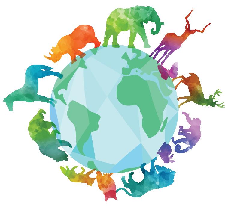 Ingestão de plástico por animais  - Portal É conosco