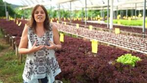 Luciana C. Quintão - Fundadora ONG Banco de Alimentos - Conteúdos Diversos