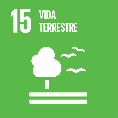 Objetivo 15 – ODS15 – Vida terrestre