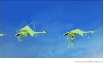 Cisnes Verdes - Portal É conosco