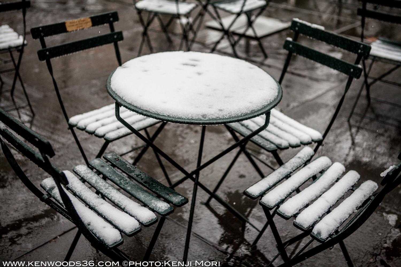 snow130308_0145.jpg