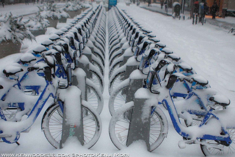 snowday_0084.jpg