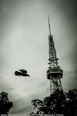 Nagoya0701_0059.jpg