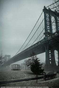 fog_0168.jpg