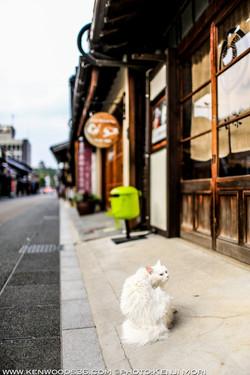 Inuyama0716_0200.jpg