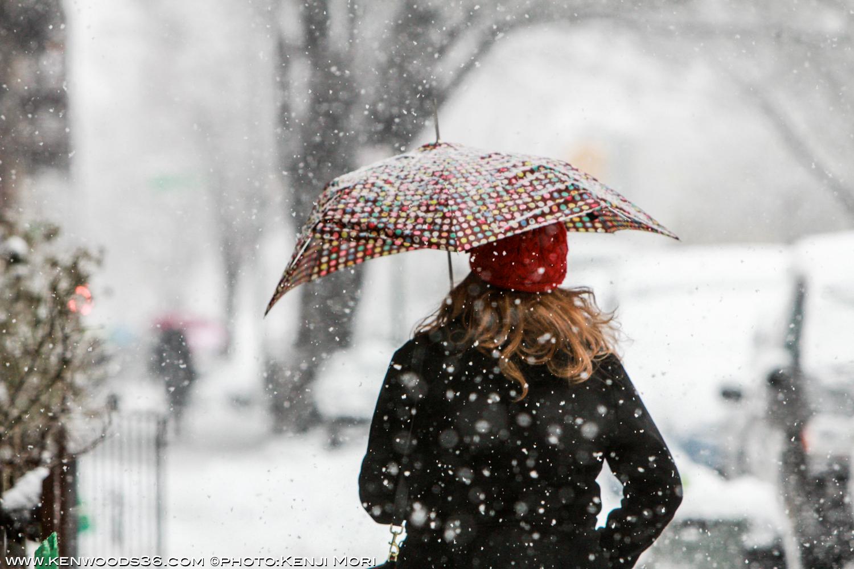 snow city_0006.jpg