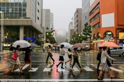 Nagoya0605_0074.jpg