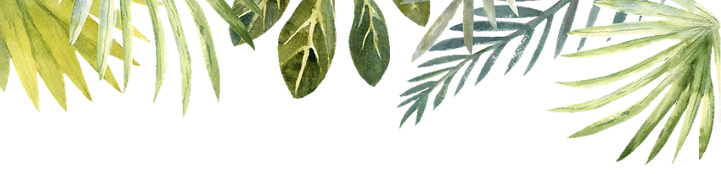 Leaves_edited_edited.png