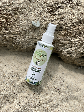 ECO Sanifect BEACH tree 100ml.png