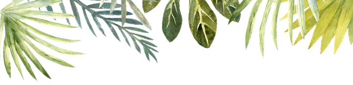Leaves_edited.png