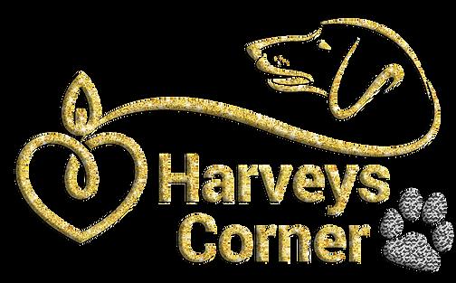 Harvey's Dachshund Blog