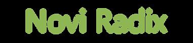 noviradix novi radix software hardware administración proyectos  inversiones