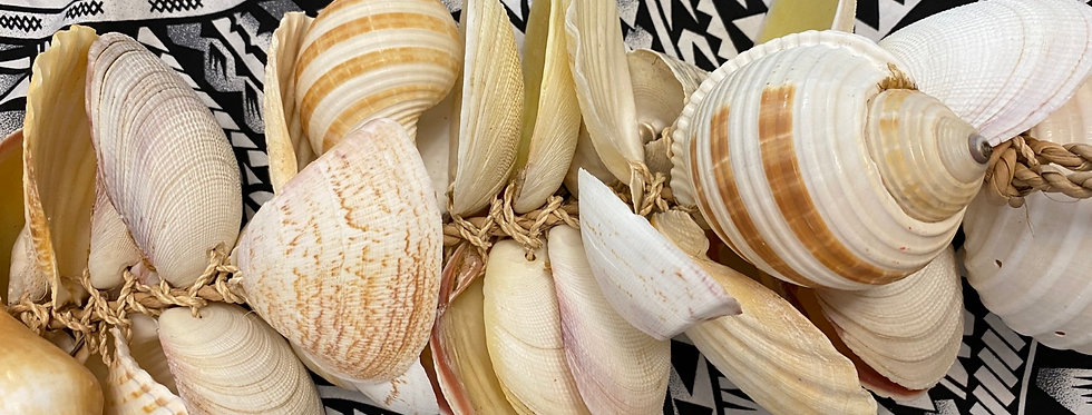 """24"""" Assorted Shell Decoration"""