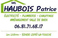 Patrice Haubois.jpg